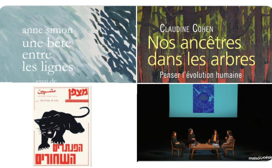 Visuel newsletter du CRAL d'Avril 2021